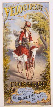 Poster - Rower- 1874 - Velocipede Tobacco