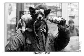 Kartka pocztowa – pies z kiełbasą 1995