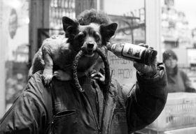 Jerzy Szot – pies z kiełbasą