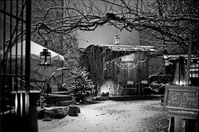 Bogdan Frymorgen – stajnia zimą