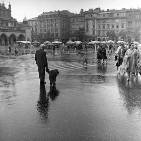 Rynek w deszczu