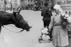 Kartka pocztowa – uliczna sprzedaż kwiatów w Warszawie
