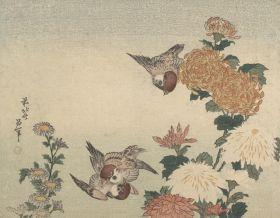 Wróble i chryzantemy - Katsushika Hokusai  - reprodukcja