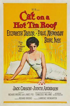 Kotka na gorącym blaszanym dachu