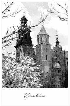 Kartka pocztowa – Wawel, Magnolie