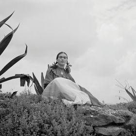 Frida Kahlo siedząca przy agawie