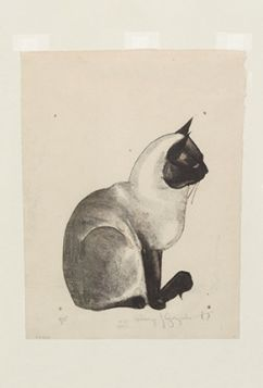 Kartka pocztowa – Kot syjamski