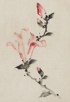 Duży różowy kwiat na łodydze - Katsushika Hokusai -  reprodukcja