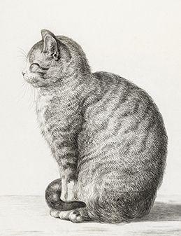 Siedzący kot - magnes