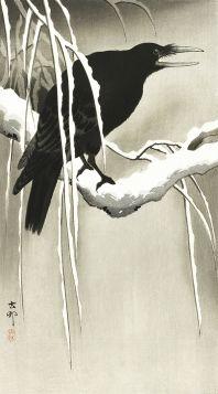 Kruk na gałęzi - magnes