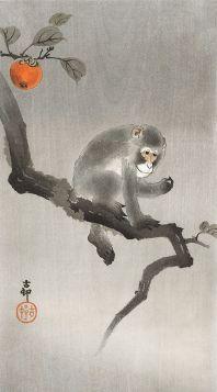 Małpa siedząca na gałęzi - magnes