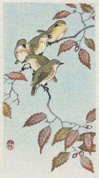 Ptaki na gałęzi - magnes