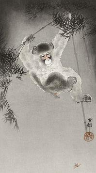 Małpa zwisająca z gałęzi bambusa - magnes