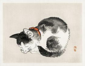 Śpiący, japoński kot - magnes