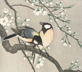 Ptaki na gałęzi wiśni - magnes