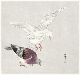Dwa gołębie - magnes