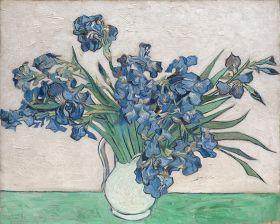 Irysy, Vincent Van Gogh - magnes
