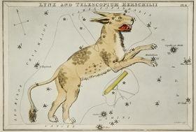 Gwiazdozbiór Telescopium Herschelii - plakat 40x27 cm