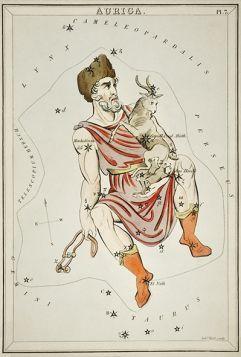 Gwiazdozbiór Auriga - plakat 40x27cm