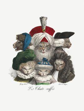 Koci wieszcze - ilustracja vintage
