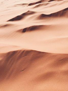 Pustynne piaski