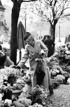 Pani z kwiatami na rynku