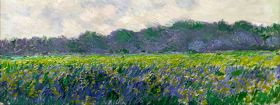 Claude Monet Field of Yellow Irises