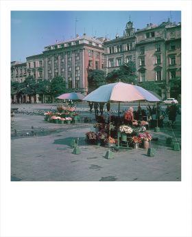 Kartka Polaroid -  Kwiaciarki