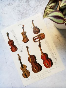 Instrumenty, skrzypce - plakat, rycina
