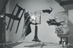 Magnes - Dali i koty