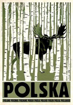 Polska, Łoś (R. Kaja)