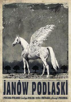 Janów Podlaski (R. Kaja)