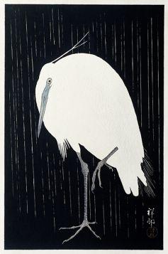 Czapla w deszczu - ilustracja vintage