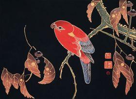Czerwona papuga na gałęzi - ilustracja vintage