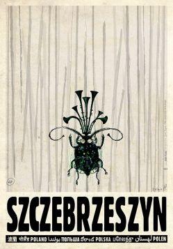Szczebrzeszyn (R. Kaja)