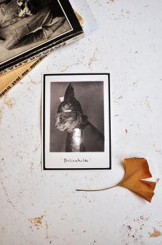 Kartka premium - Brunhilda