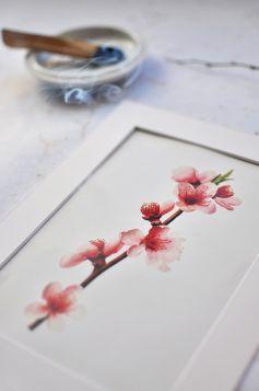 Kwitnące kwiaty na gałęzi - zdjęcie z passe-partout