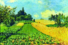 Pola zbóż na wzgórzach Argenteuil - Alfred Sisley - reprodukcja
