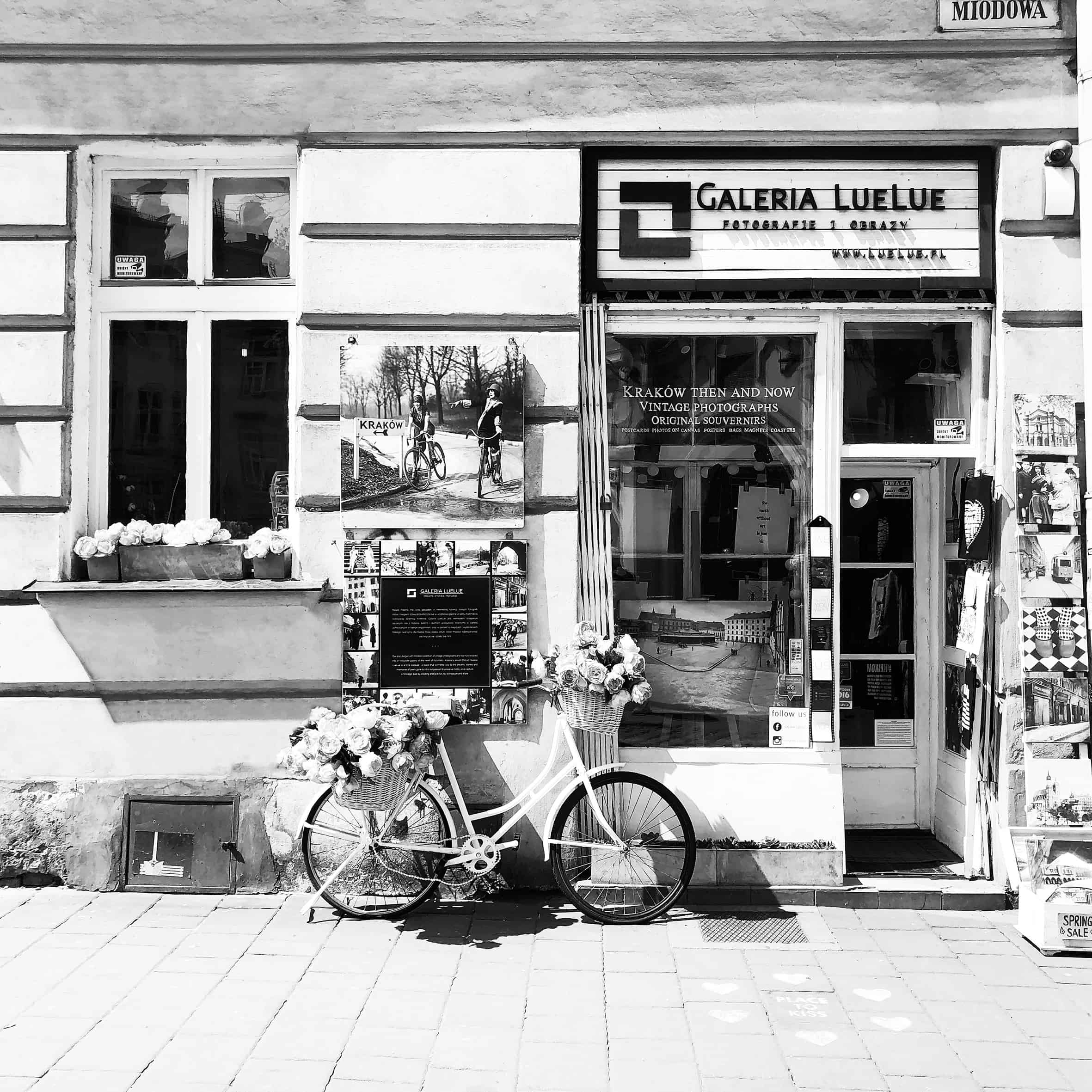 1 Galeria LueLue